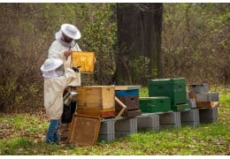 Un calendario de apicultores