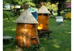 Top Best Bee Boxes